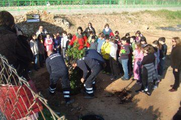 Animacion en Valencia Proyectos Educativos- Plantar Arboles
