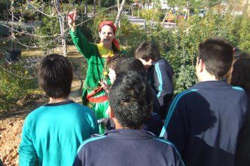 Animacion en Valencia Proyectos Educativos- Bosque