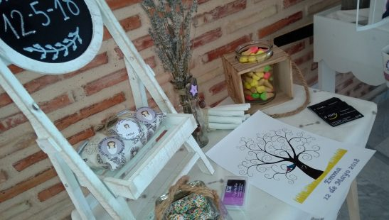 CARRITOS DE CHUCHES (2)